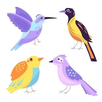 Tirage de la collection d'oiseaux