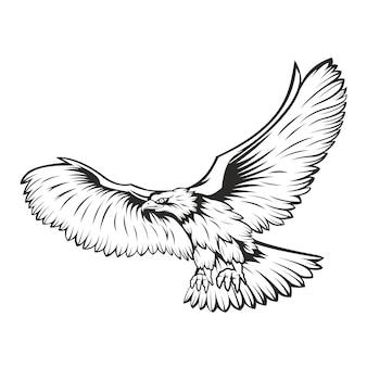 Tirage à la main noir et blanc aigle