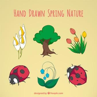 Tiré par la main nature printemps