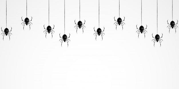 Toile d'araignée effrayant