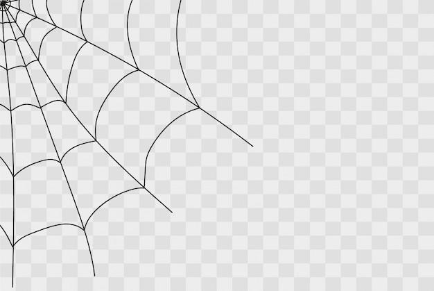 Toile d'araignée effrayante