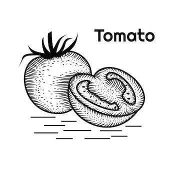 Tomate dessiné à la main