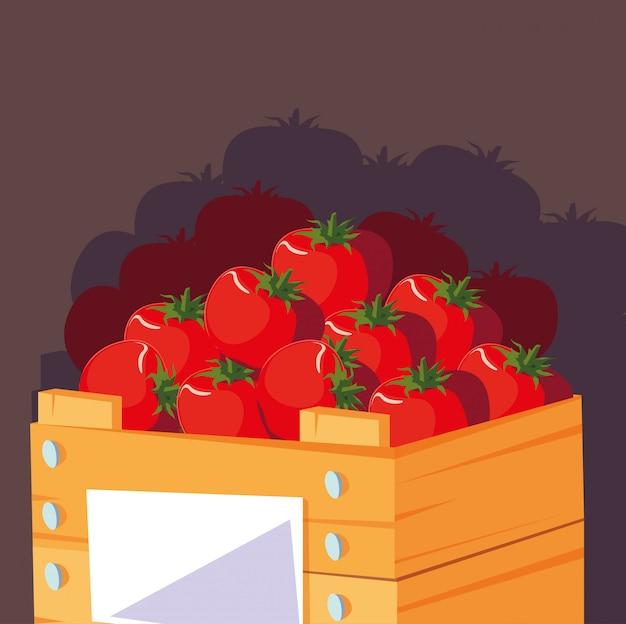 Tomates rouges fraîches dans une caisse en bois