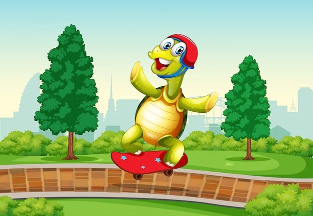 Tortue jouant au skateboard dans le parc