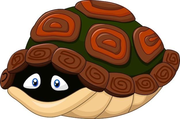 La tortue mignonne se cache dans sa coquille