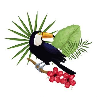 Toucan hibiscus branche feuilles de palmier