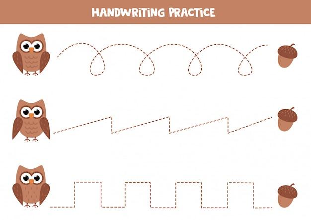 Tracez les lignes entre le hibou brun de dessin animé et le gland.