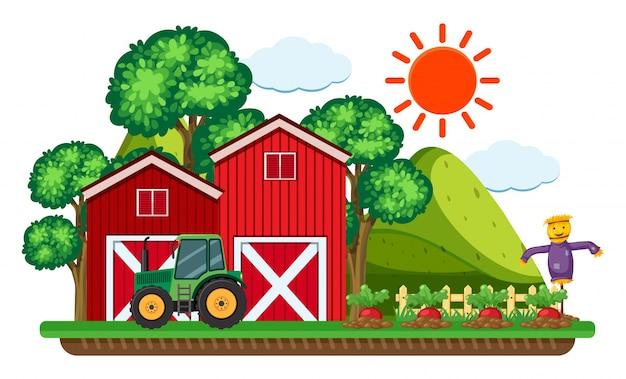 Tracteur vert par les granges rouges