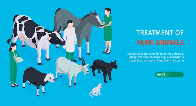 Traitement des animaux de la ferme bannière web horizontale avec des vétérinaires qui s'occupent des animaux de compagnie isométrique