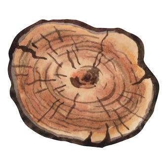 Tranche de bois de texture bois aquarelle