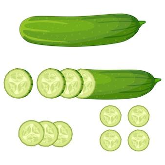 Tranche de concombre vert frais sur fond blanc