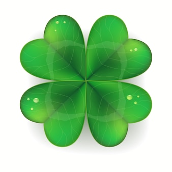 Trèfle vert réaliste, symbole de la saint patricks day, trèfle à quatre feuilles,