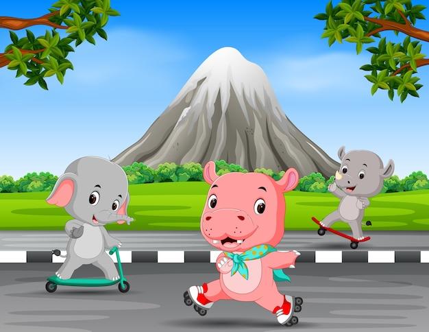 Trois animaux jouant sur la route
