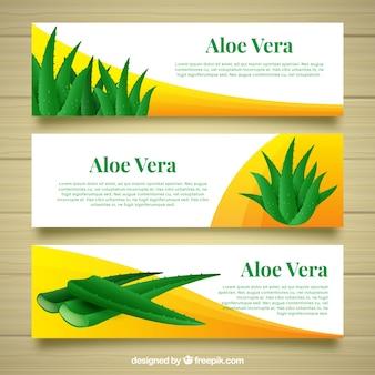 Trois bannières d'aloe vera avec des formes abstraites