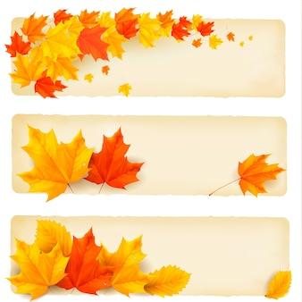 Trois bannières d'automne avec des feuilles colorées