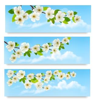 Trois bannières de printemps avec brunch d'arbres en fleurs avec des fleurs de printemps.