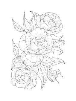 Trois pivoines en fleurs avec un bourgeon et des feuilles. pages de livre de coloriage de vecteur. antistress pour adultes et enfants. f
