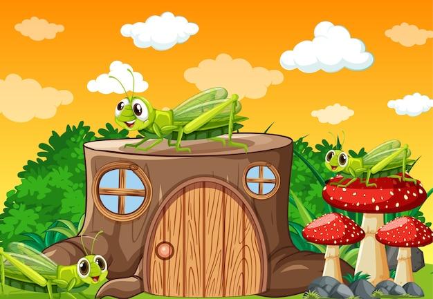 Trois sauterelles vivant dans le jardin pendant la journée avec maison de souche