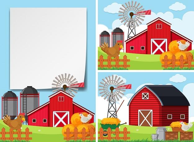 Trois scènes avec des granges et des poulets