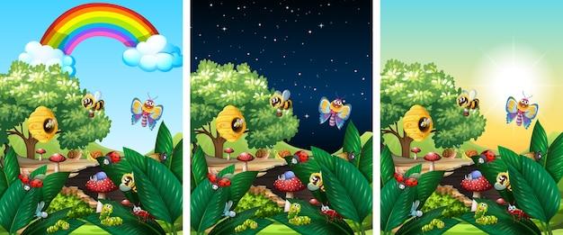 Trois scènes de la nature avec des moments différents