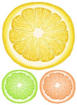 Trois tranches de citron de différentes couleurs