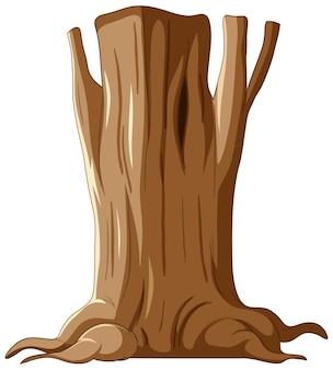 Tronc d'arbre isolé et racines