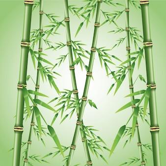 Tronc de bambou avec l'icône de feuilles. décoration de plantes de la nature