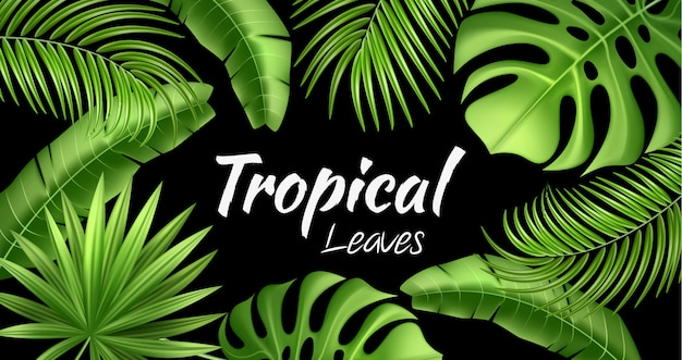 Tropical tropical de vecteur laisse des vacances exotiques