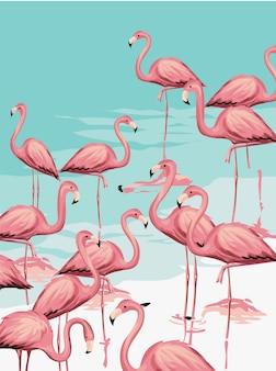 Troupeau de flamant rose sur l'illustration de la plage