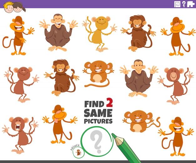 Trouver deux mêmes jeux éducatifs de singes pour les enfants