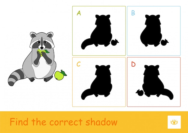 Trouvez le bon jeu d'ombres d'apprentissage pour les enfants avec le raton laveur mangeant une pomme et quatre ombres de silhouette pour les plus jeunes. amusement et apprentissage des animaux sauvages pour les enfants.