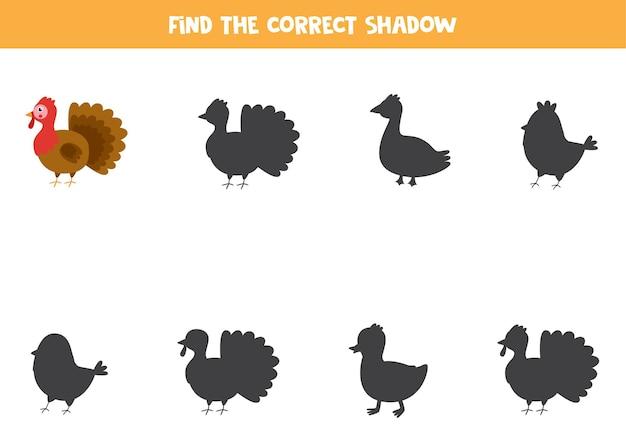 Trouvez la bonne ombre du puzzle logique de la turquie de la ferme pour les enfants