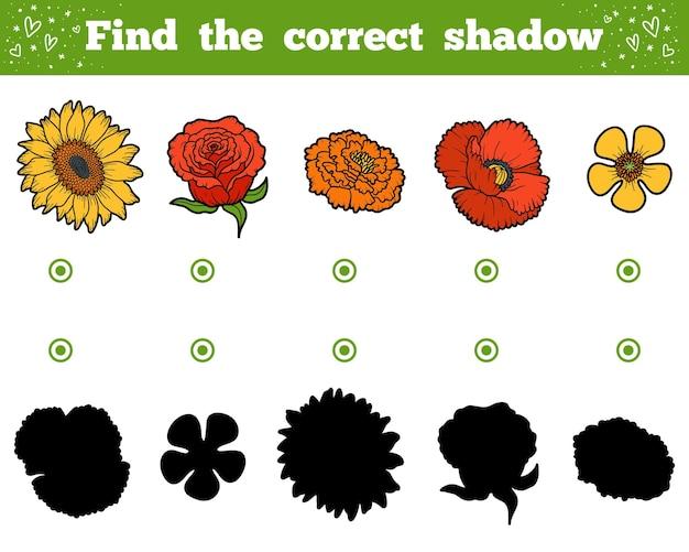 Trouvez la bonne ombre, jeu éducatif pour les enfants. ensemble de fleurs