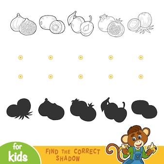 Trouvez la bonne ombre, jeu éducatif pour les enfants. fruits noirs et blancs