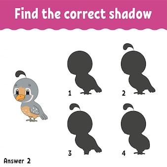 Trouvez la bonne ombre. tracer une ligne. feuille de travail pour le développement de l'éducation.