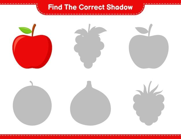 Trouvez la bonne ombre. trouvez et faites correspondre l'ombre correcte d'apple. jeu éducatif pour enfants, feuille de travail imprimable