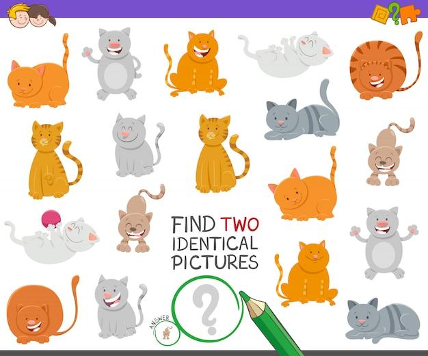 Trouvez deux chats identiques jeu éducatif pour les enfants