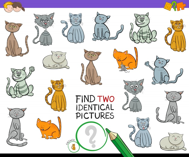 Trouvez deux images de chat identiques pour les enfants