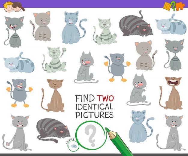 Trouvez deux images identiques jeu éducatif avec des chats