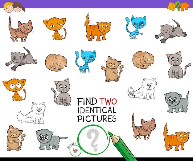 Trouvez deux jeux d'images de chaton identiques pour les enfants
