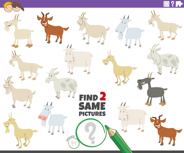 Trouvez deux mêmes jeux éducatifs pour les chèvres pour les enfants