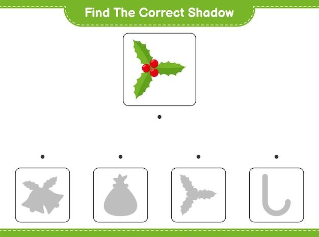 Trouvez et faites correspondre l'ombre correcte des baies de houx