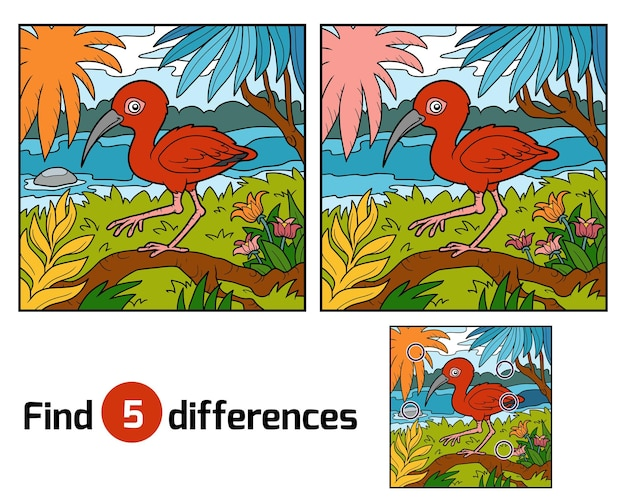 Trouvez Le Jeu éducatif Des Différences Pour Les Enfants, Scarlet Ibis Vecteur Premium