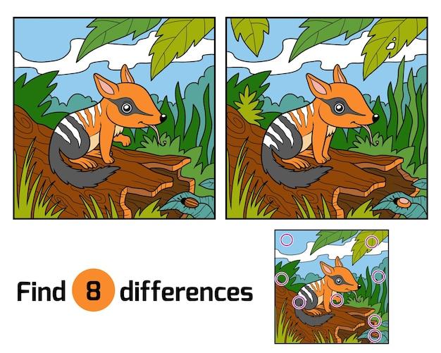 Trouvez le jeu d'éducation des différences pour les enfants, numbat