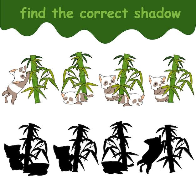 Trouvez l'ombre correcte de l'adorable personnage de chat panda