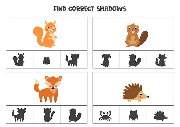 Trouvez l'ombre correcte des animaux de la forêt mignons. jeux de cartes à clips imprimables pour les enfants.