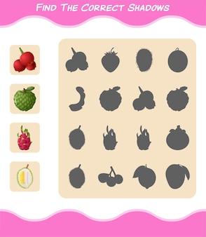 Trouvez les ombres correctes des fruits de dessin animé. jeu de recherche et d'association. jeu éducatif pour les enfants et les tout-petits de la maternelle