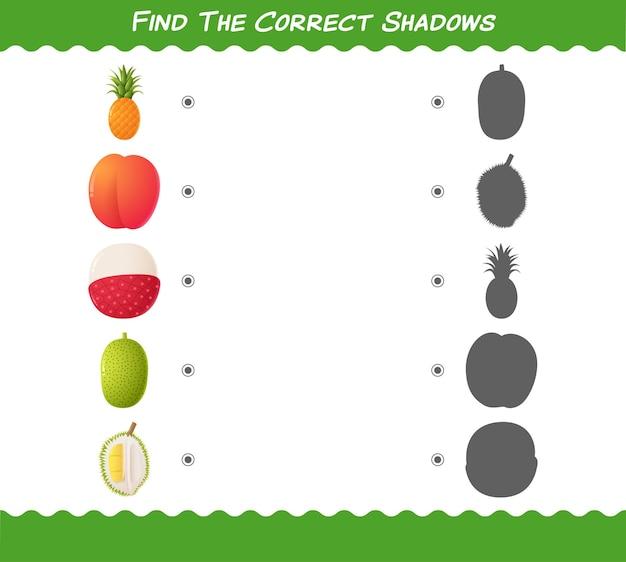 Trouvez les ombres correctes des fruits de dessins animés. jeu de recherche et d'association.