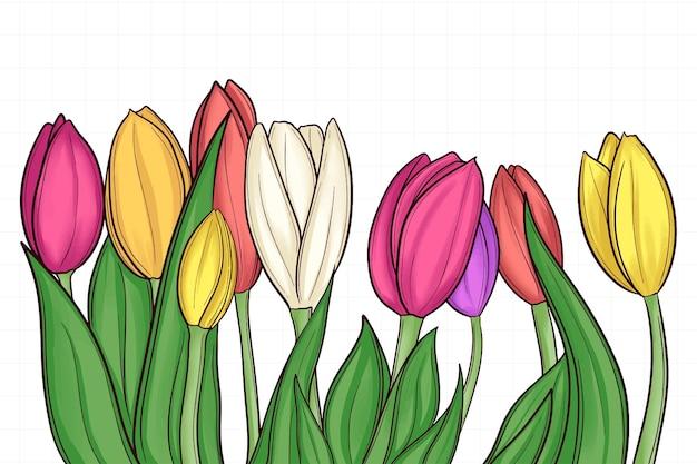Tulipe Dessinée à La Main Mignon Isolé Sur Blanc Vecteur Premium
