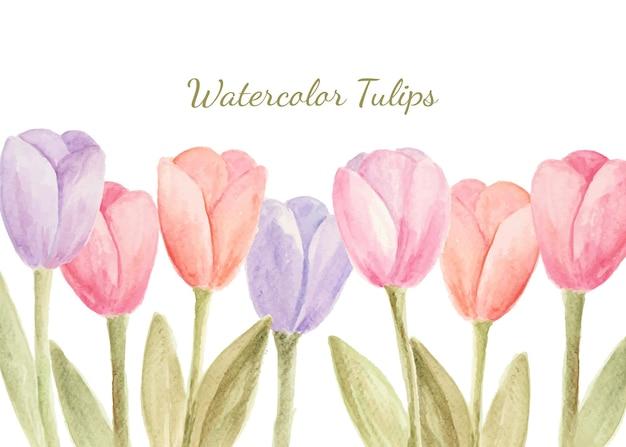 Tulipes aquarelles comme toile de fond